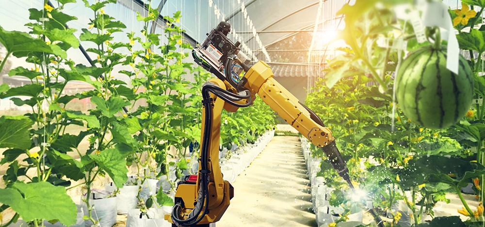 Ứng dụng robot, sản xuất nông nghiệp
